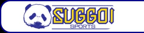 スッゴイスポーツ SUGGOI SPORTS