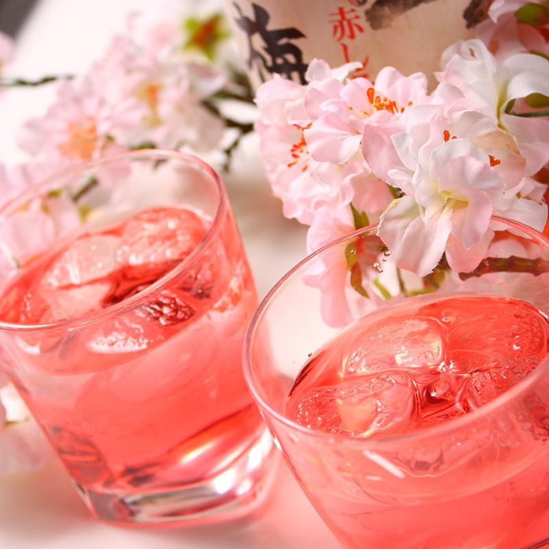 Available in convenient single item all-you-can-drink also to sudden drink ★ MENU is 100 or more!
