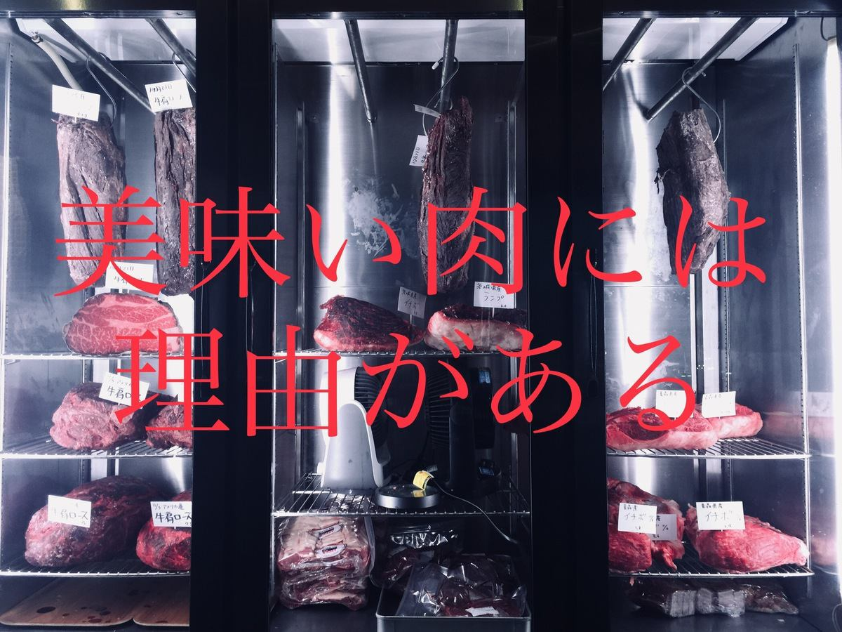 浓缩独家老化店umi