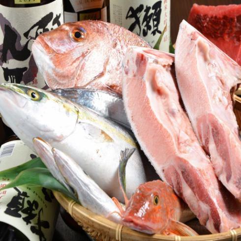 """有趣的季節性免費魚""""ISO銀衣服""""優秀烤金槍魚這樣鐮很受歡迎"""