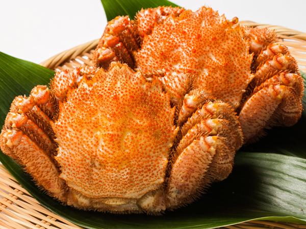 Hairy crab at Hamuyu