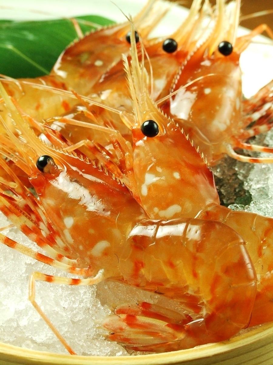 Activate button eating shrimp dance!
