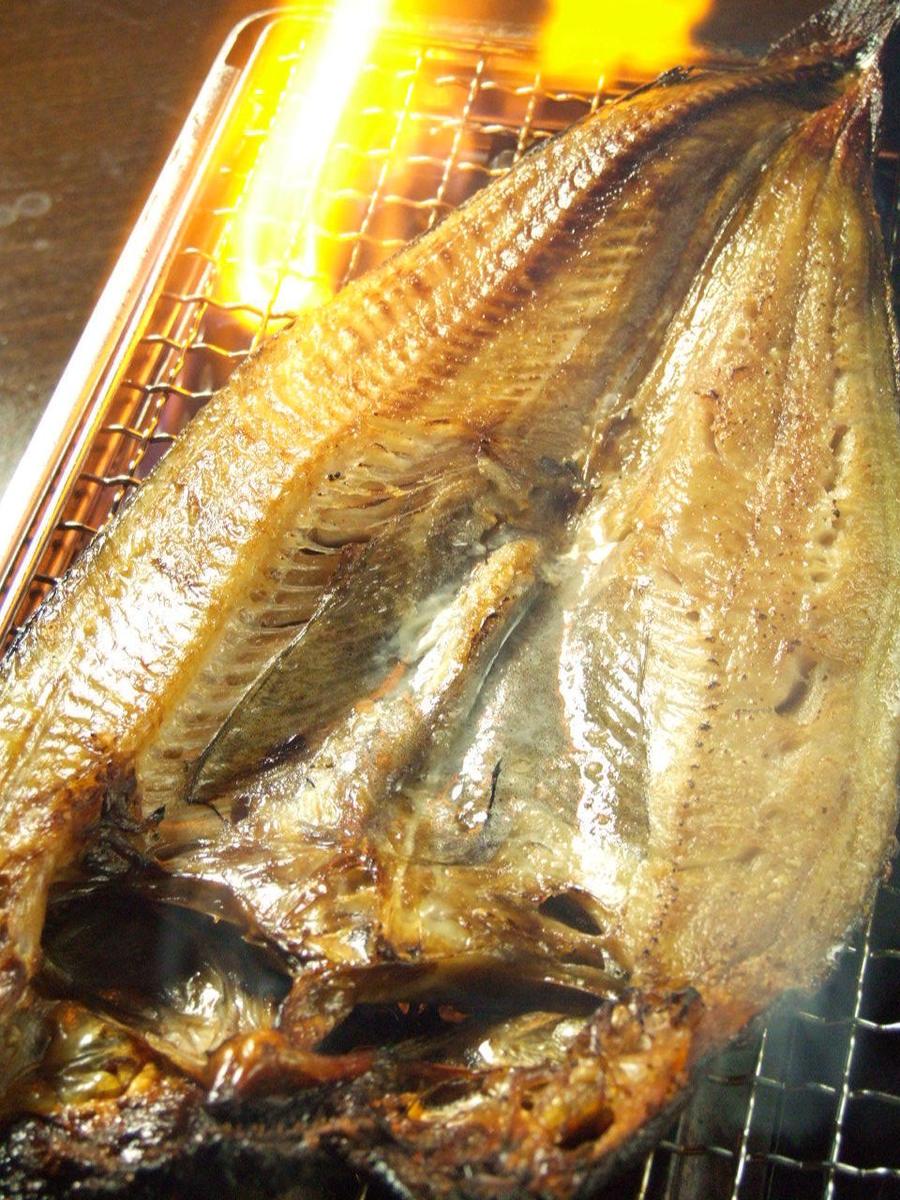 Oversized Salmon Halas · King Salmon · Opening · Opening buddy · New appearance! Opening of herrings!