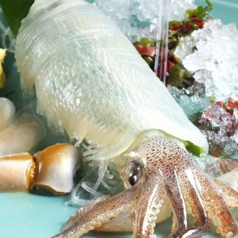 Active squid, active button shrimp, active abalone, lively octopus, livelihood, livelihood etc ...