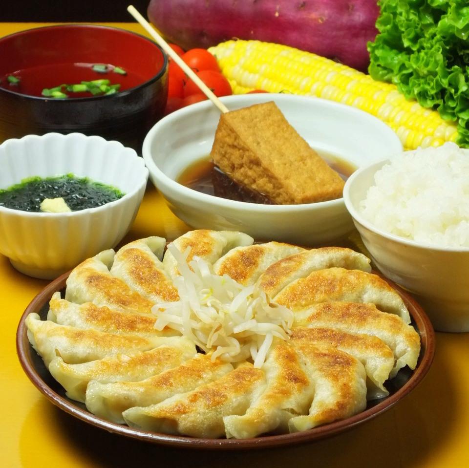 Hamamatsu dumpling set meal