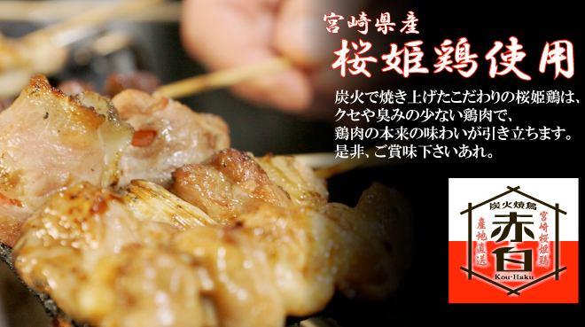 음료는 전품 280 엔 균일! 우에 혼 마치 / 다니 마치 구 쵸메에 등장! 미야자키 벚꽃 공주 닭 사용의 숯불 닭 꼬치 구이 전문점