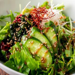 新鮮採摘的蔬菜choregi沙拉