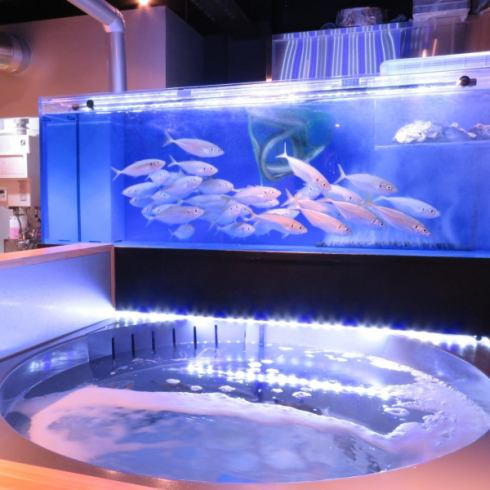 When entering the entrance there is a big aquarium in front of you ... a shop that you can enjoy even visually ◎