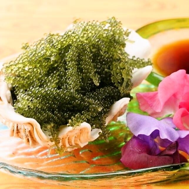 Fluent in authentic Okinawan food ♪