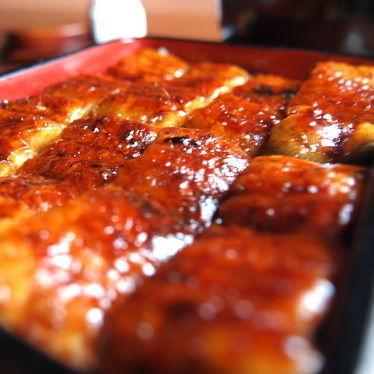 특상 장어 덮밥