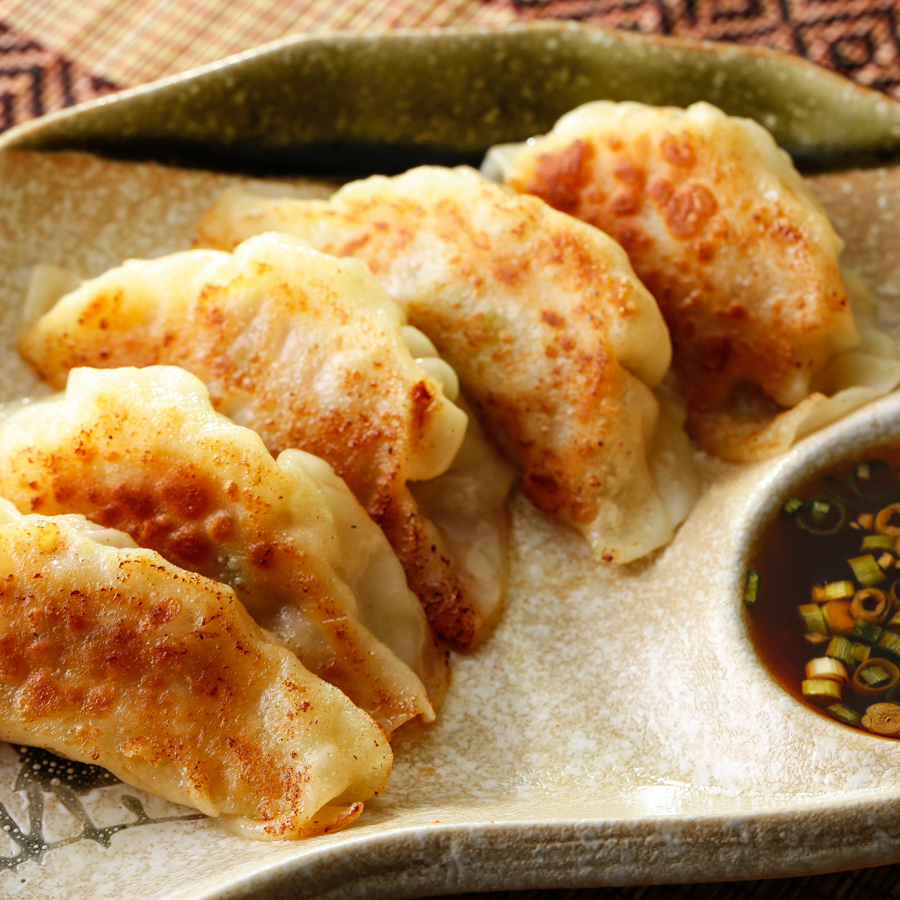 Grilled gyoza (gyoza) / fried spring roll