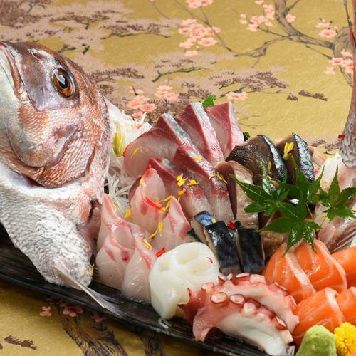 魚好き納得の鮮度!季節の美味をご堪能ください。旬が一度に揃う『盛り合わせ』がおすすめです!