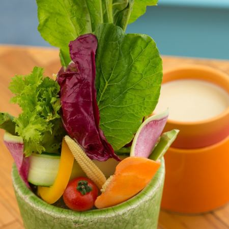 Fresh vegetables taste of the earth Bagna cauda