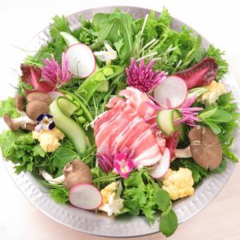 【全友畅饮2小时】即食竹◎适合年终派对!10种蔬菜×涮涮锅套餐4500日元(含税)