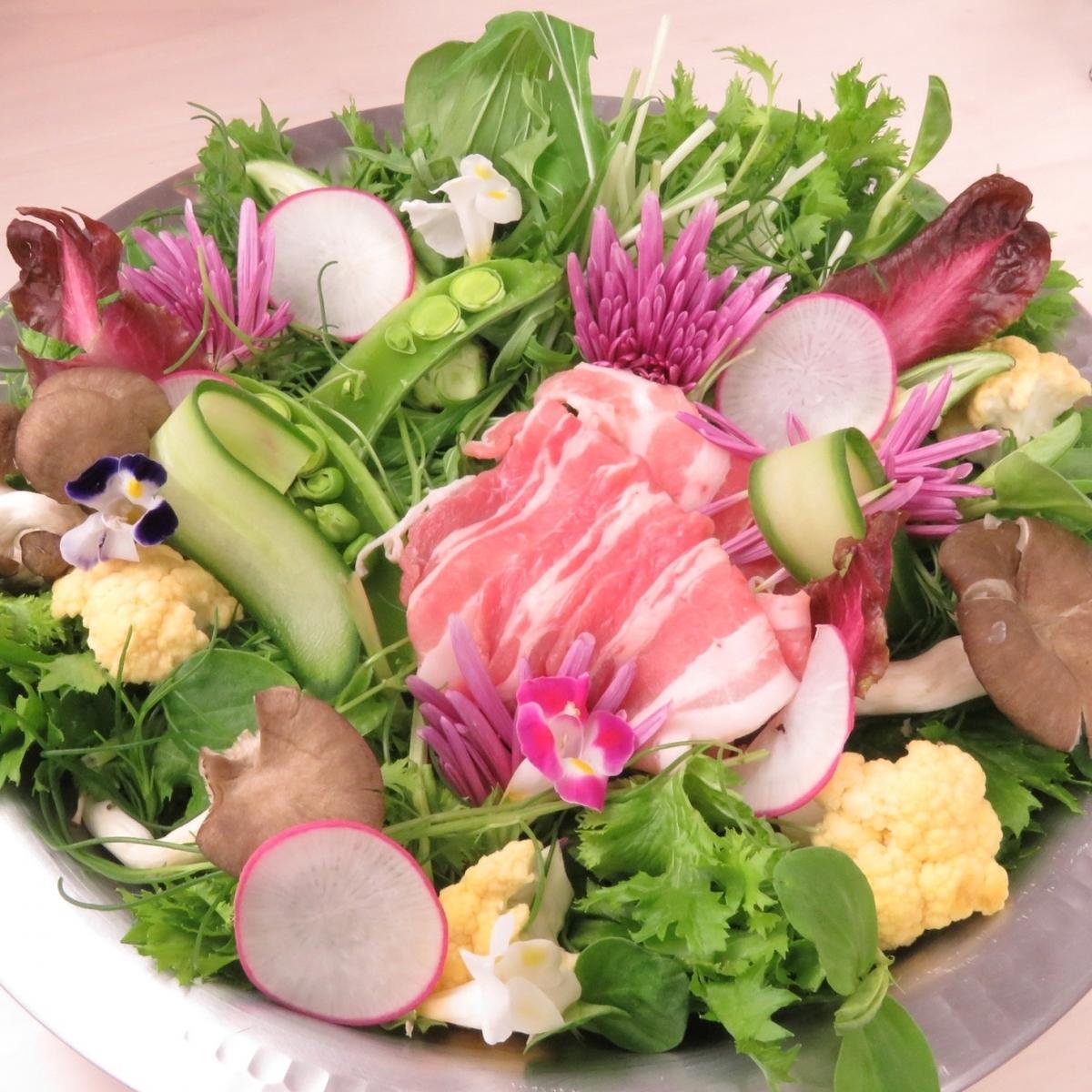10 kinds of ground vegetables × morning mist cloud pork shabu-shabu pot ♪