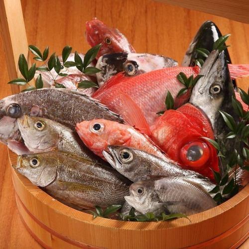 各漁港より直送の新鮮素材