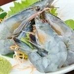 虾虾/虾虾