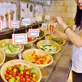 【JA直送】静岡県産&国産野菜が日替わりで16種類詰め放題(※単品注文可)