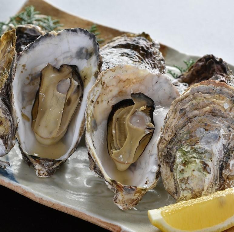 Oyster Seto潔具