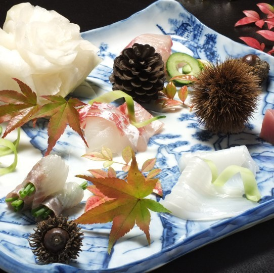 Assorted sashimi 5 types