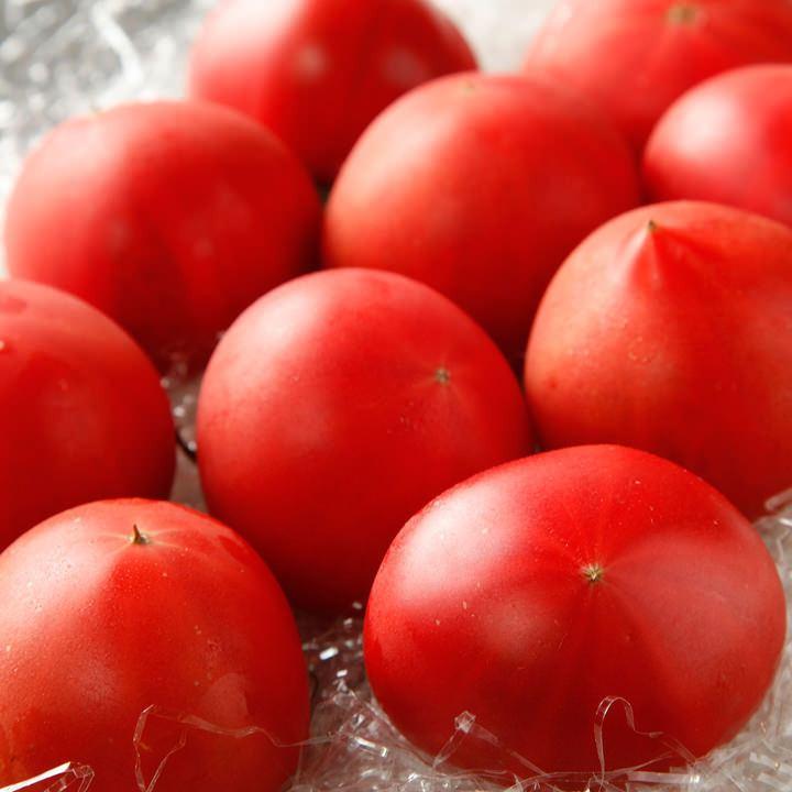 高知県産 徳谷トマト