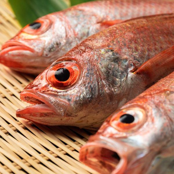 新潟名物【のどぐろ】や鮮魚、契約農家直送新鮮野菜を味わえるお店