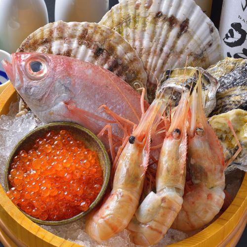 静岡漁港直送の鮮魚