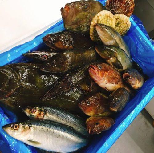 全国各地の漁港より直送の鮮魚♪鮮度抜群☆