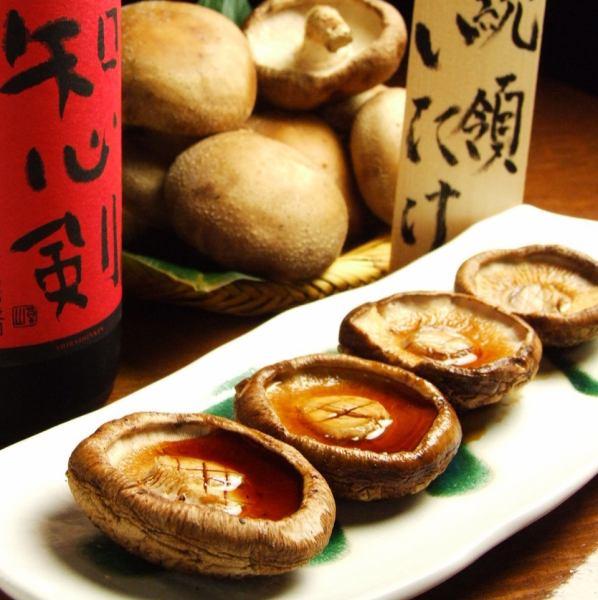 홋카이도 시라 오이 정 산 대통령 표고 버섯