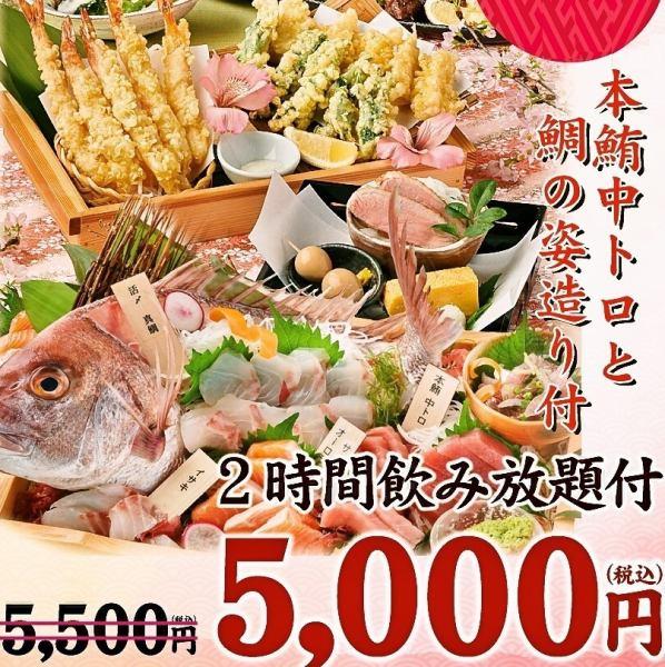 鯛の姿造り付 春の宵コース~harunoyoi~料理9品 2時間飲み放題付 5500円⇒5000円