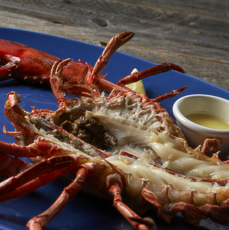 ライブロブスター(オーブン焼き) R(レギュラー) Live Lobster (Oven-baked)  Regular