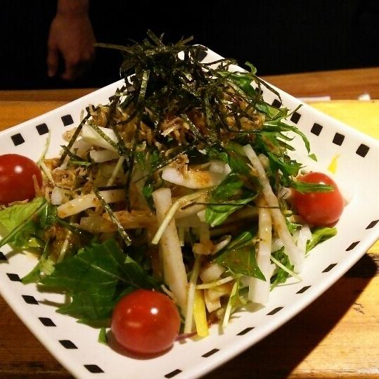 Shigeru and Mizuna radish salad