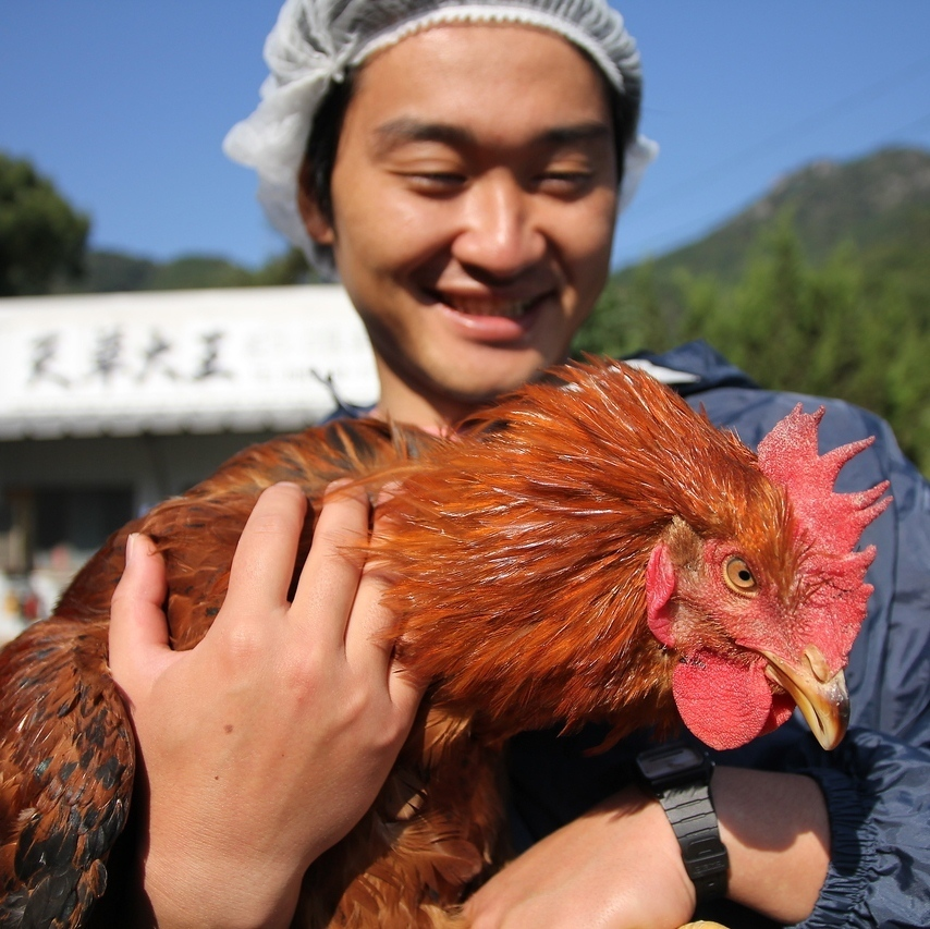 Amakusa the Great's visit to the poultry house