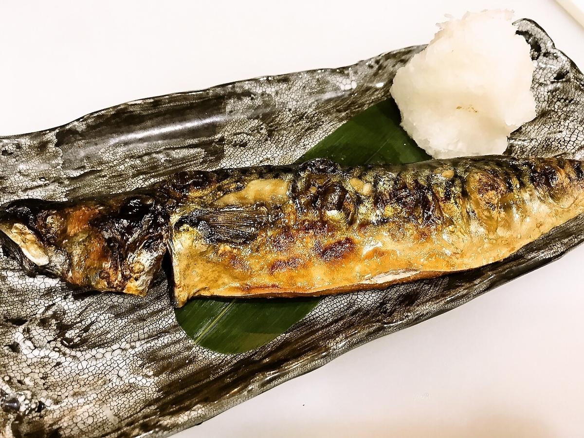Cultural mackerel