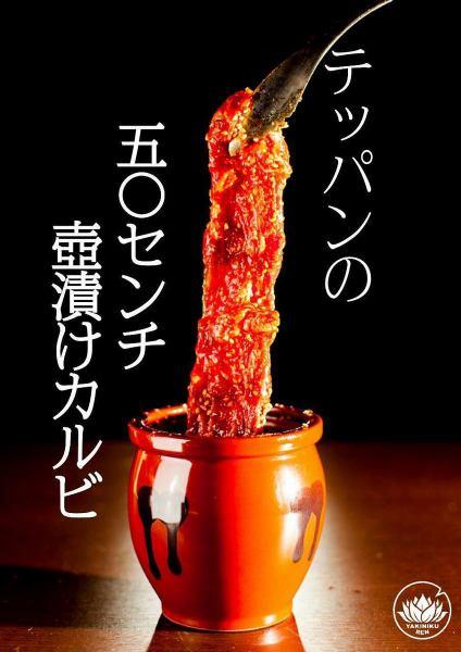 [Specialty! Tsubo漬 50 centimeter Calvi]