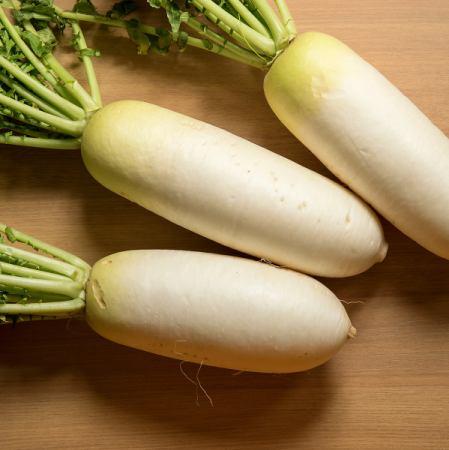 Kaga vegetables Gensuke radish