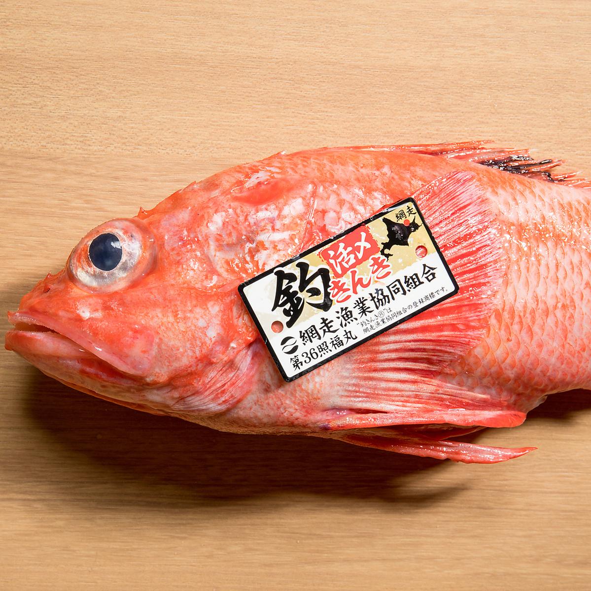홋카이도 아바시리 낚시 물 킨키