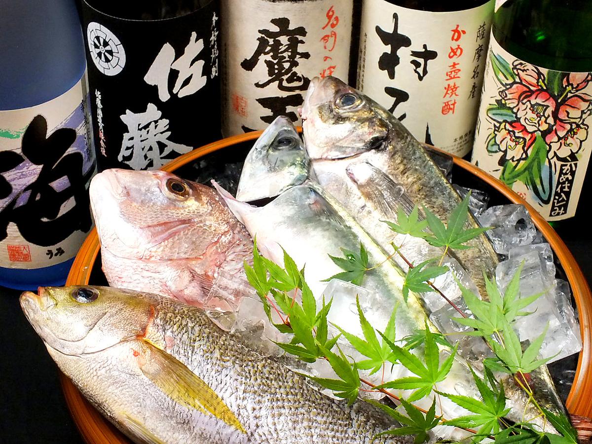 [이토 직송!】 신선한 야채 · 생선을 사용한 요리가 자랑