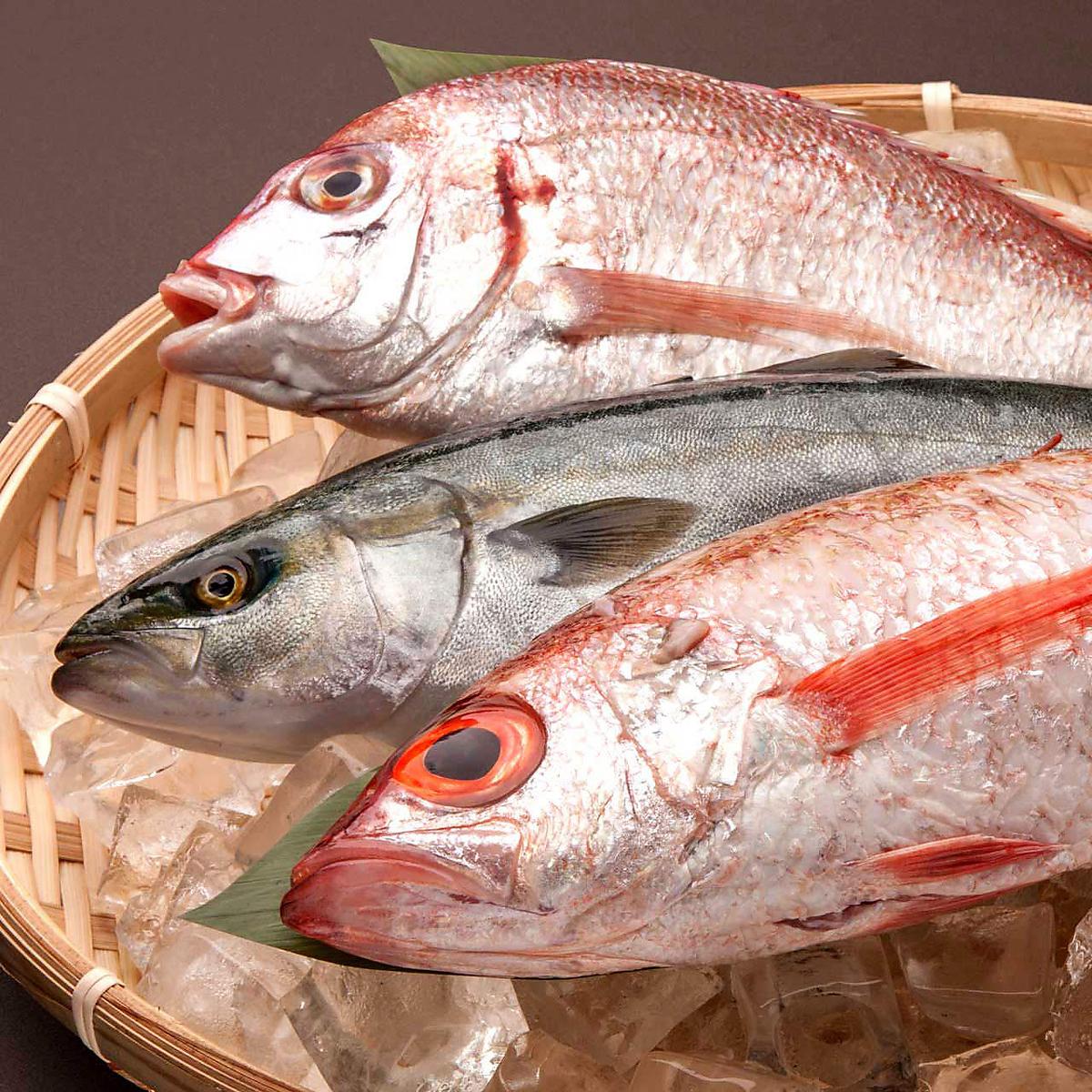 今天是新鮮的魚