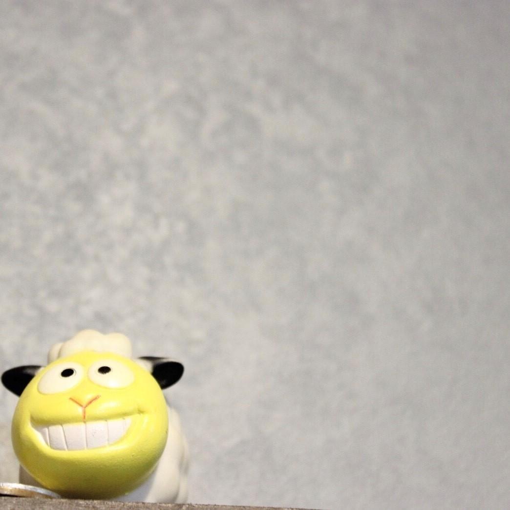 店内は隠れ羊が沢山。見つけたらラッキーなことがおこるかも。