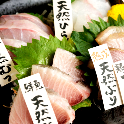 Today's fresh fish · matured fish making