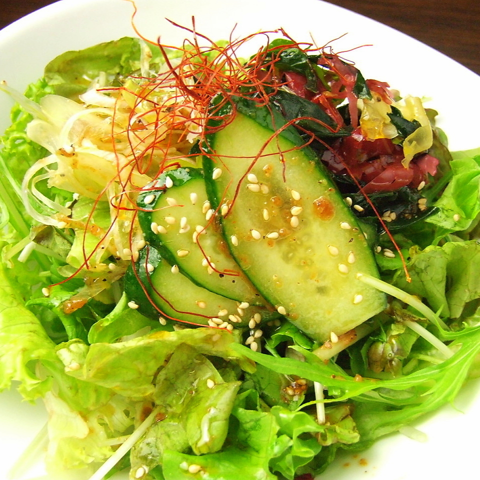 Freshly-harvested vegetable chopped salad