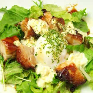Teriyaki chicken and hot spring egg tartare salad