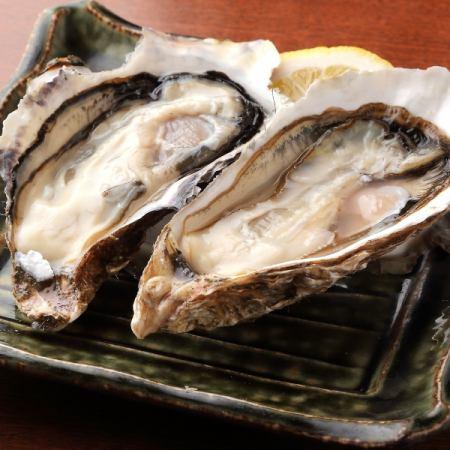 厚岸産生牡蠣(1個)