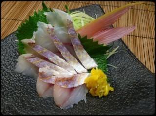 Snapper sashimi than yarn