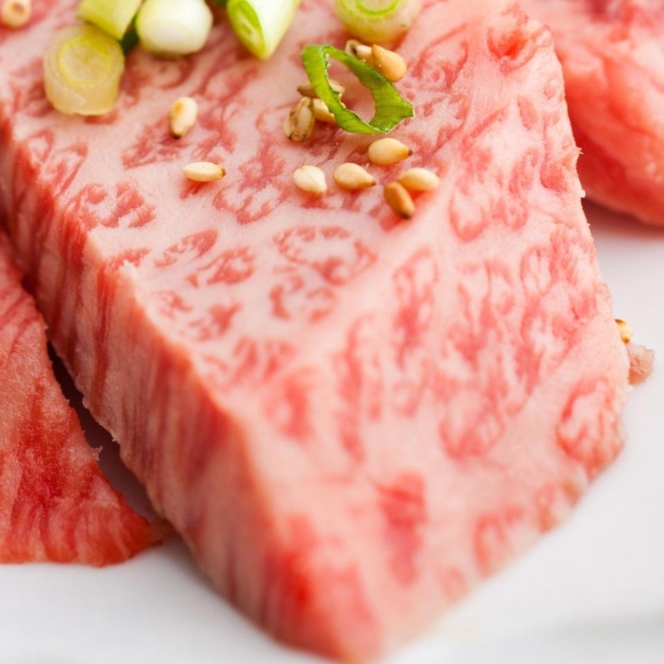 A4A 5合理的肉類