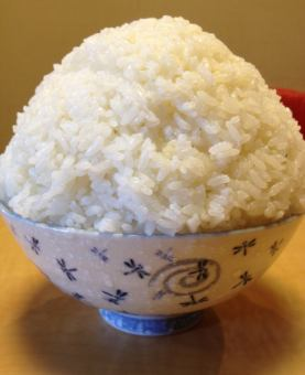 Rice (small) (medium) (large) (extra large)