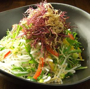 Japanese style salad with fried jaco and mizuna