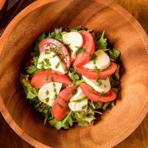 沙拉 - 成熟番茄的卡普雷塞 -