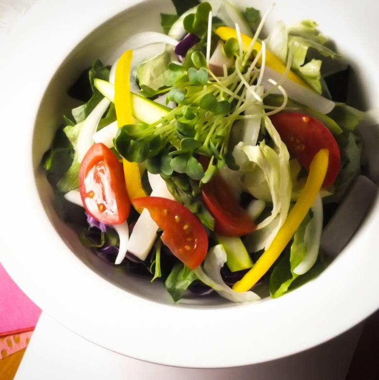 本日の畑サラダ
